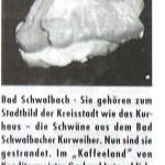 Peter Wolff - neue Schwäne für Bad Schwalbach